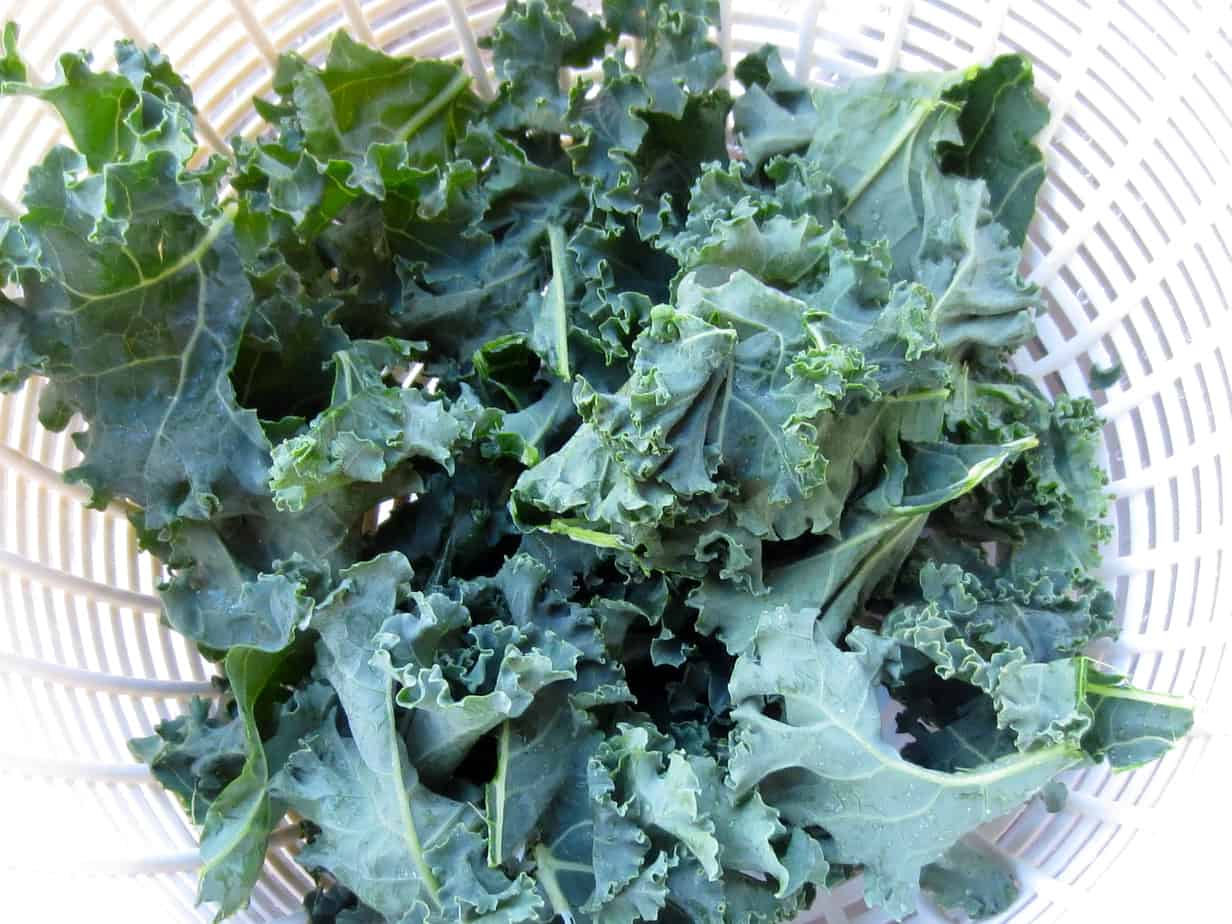 Dry Kale Thoroughly