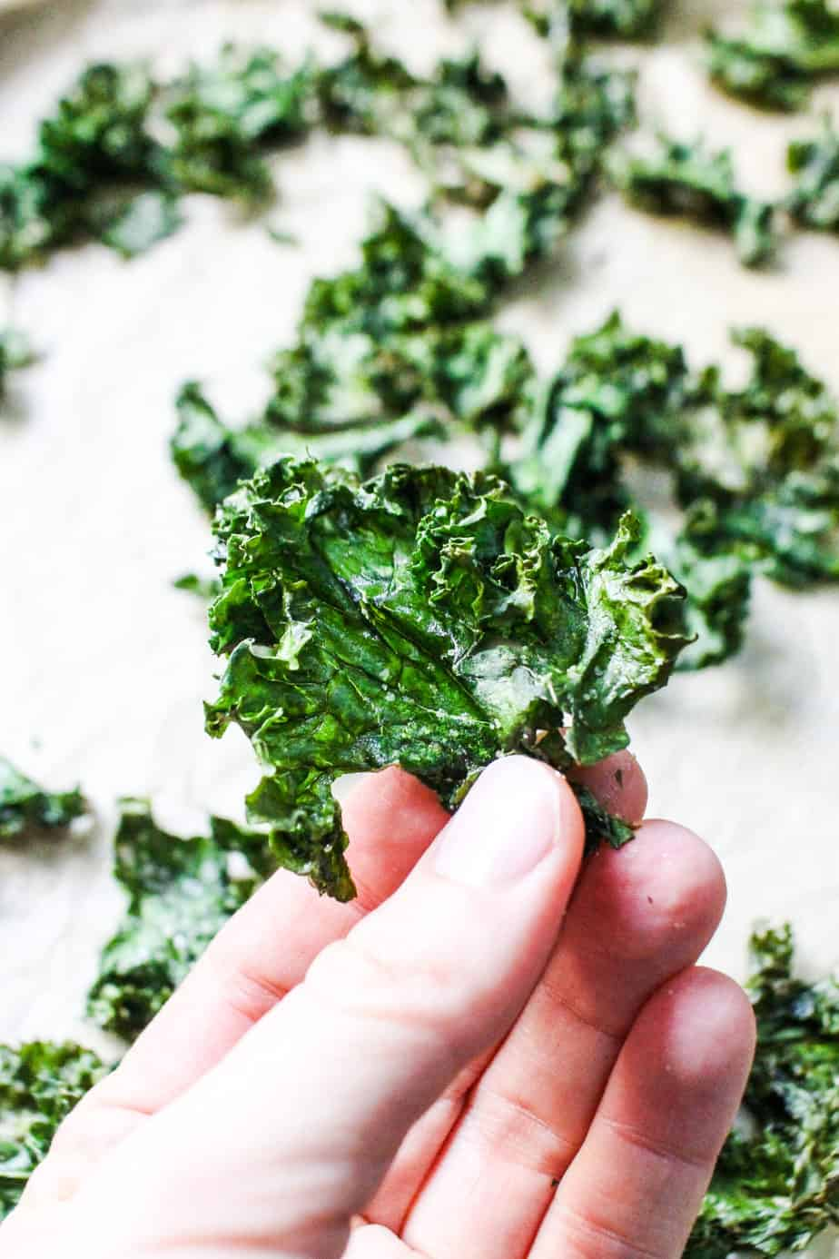 white hand holding a crispy kale chip with a background of kale chips on parchment paper
