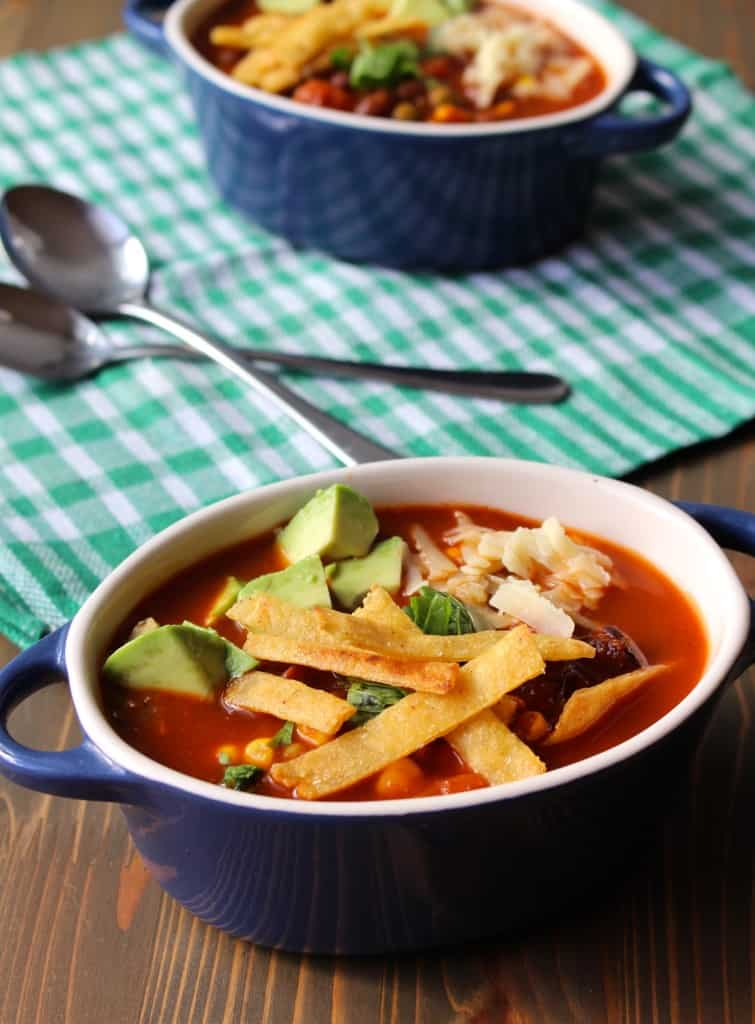 Homemade Red Enchilada Soup - Easy! By Frugal Nutrition