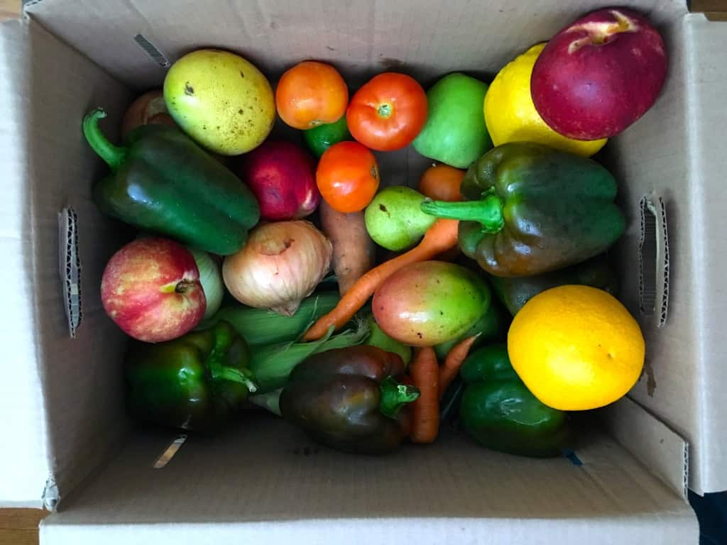 Hungry Harvest Box | Frugal Nutrition