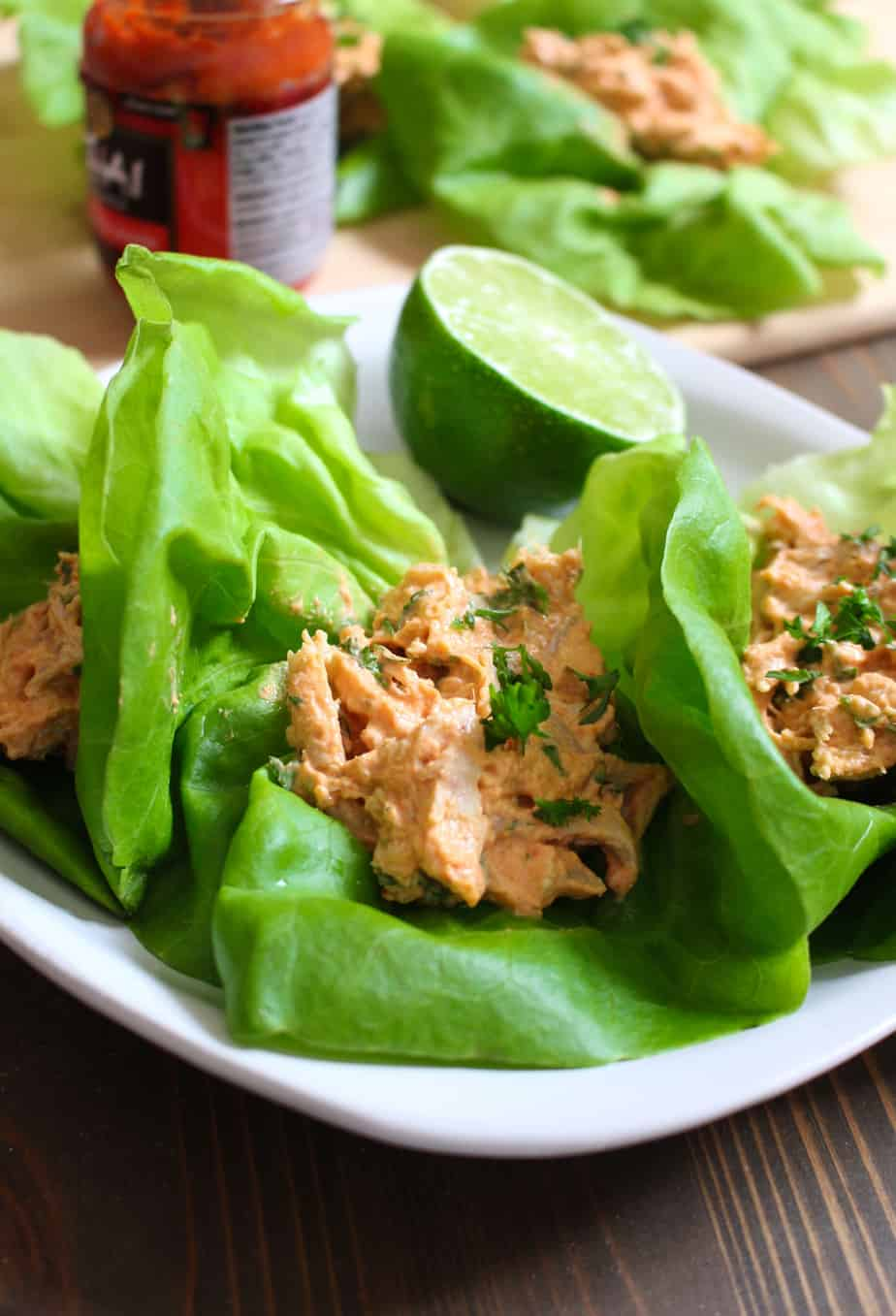 Thai Red Curry Chicken Lettuce Wraps | Frugal Nutrition