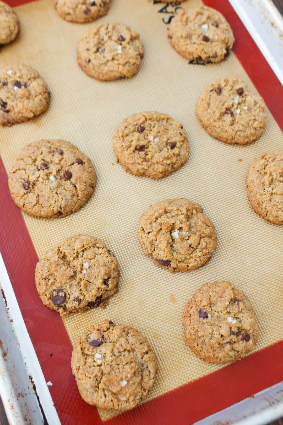 Homemade Allergy Friendly Chocolate Chip Cookies | Frugal Nutrition