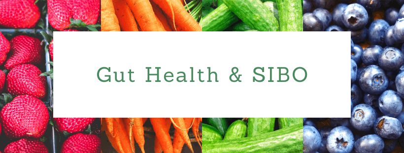 Gut Health and SIBO